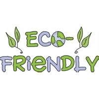 BECOming ECO friendly essay